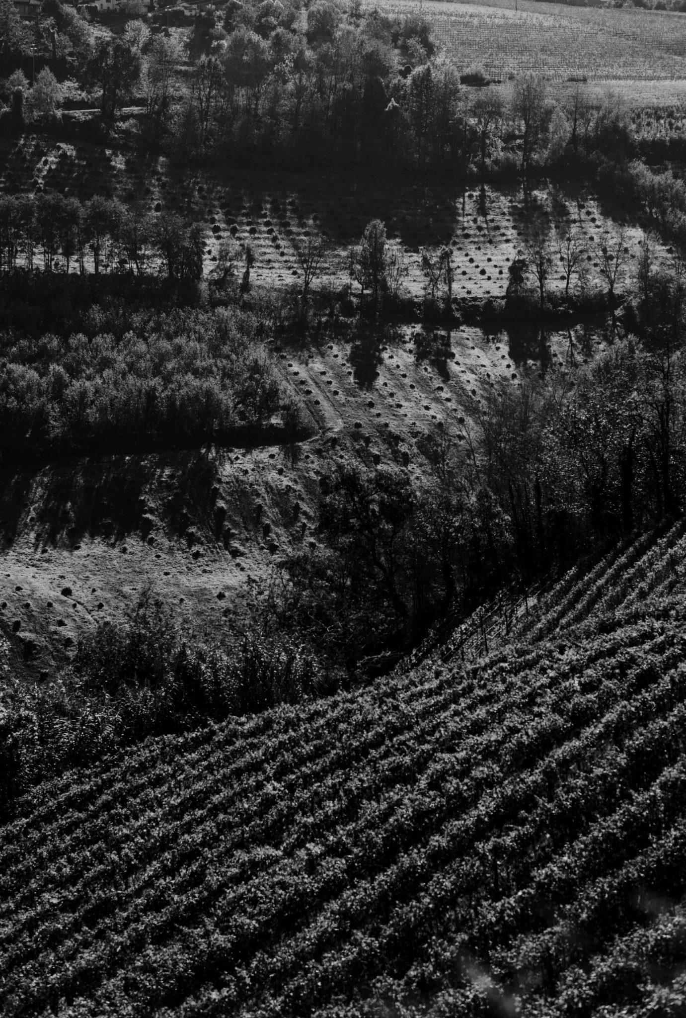 Langhe Countryside, Piedmont, Italy | Casa di Langa