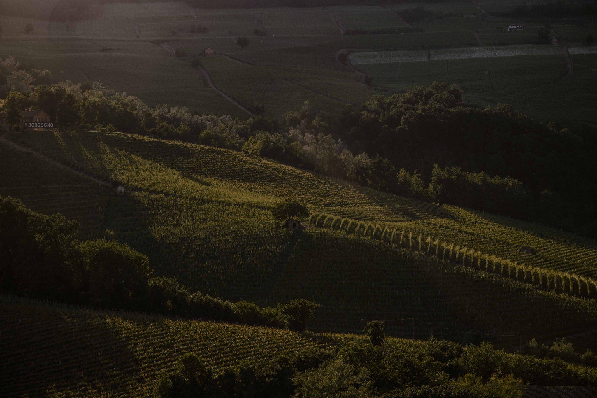 Langhe sunset view, Piedmont, Italy | Casa di Langa
